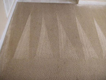 Carpet Cleaning Eastover NC
